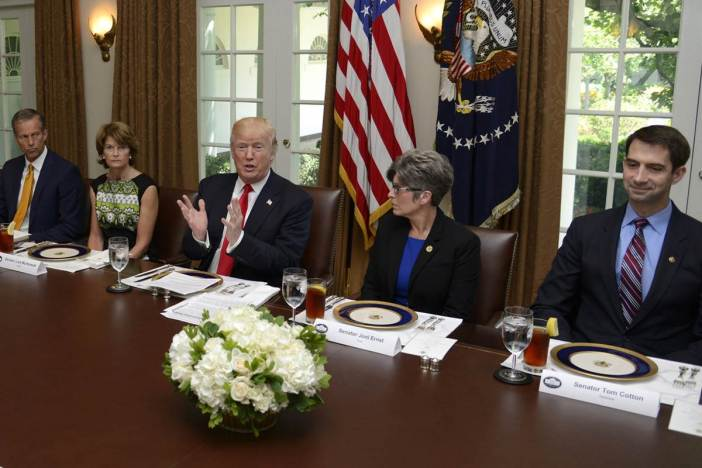 170613-donald-trump-working-lunch-congress-healthcare-reform-se-145p_9153087c3aafc4ad2cd1427388a82f64.nbcnews-fp-1200-800